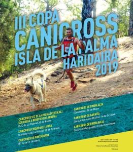 Canicross: Hunde und ihre Menschen beim Trailrun im Team.