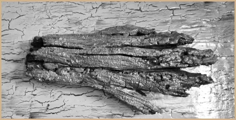 """""""Rustikal und hässlich, aber gleichzeitig schön"""": So beschreibt Reyes seine Skulpturen aus Wurzeln. Foto: La Palma 24"""