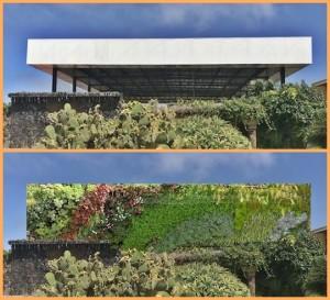 Inselgäste können sich freuen: Die Fotos von der Plaza Glorieta in Las Manchas können bald wieder ohne das störende Schulhofdach geschossen werden.
