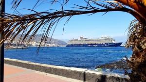 Kreuzfahrer-Boom im Hafen von Santa Cruz: allein im Januar 2019 werden