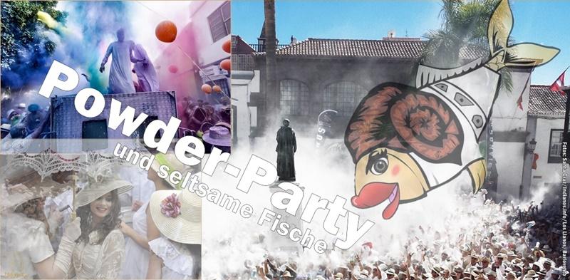 karneval-2019-la-palma-titel-800