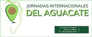 Premiere auf La Palma: internationale Avocado-Konferenz.
