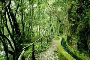 Vom Besucherzentrum aus kann man Spaziergänge und Wanderungen auf dem PR LP 6 bis zu den Quellen von Marcos y Cordero, zum Aussichtspunkt Espigón Atravesado oder über den Wanderweg PR LP 7 bis zum Aussichtspunkt Barandas unternehmen.