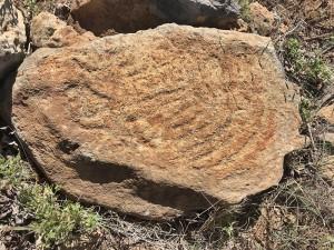 Bei Tijarafe: Fund einer Felsritzung der Ureinwohner. Foto: Cabildo