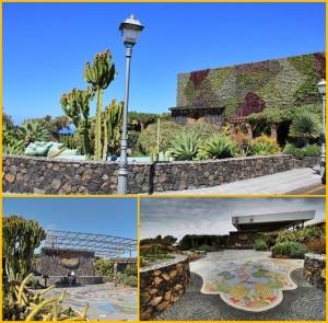 Die Plaza Glorieta am 8. April 2019 (Bild oben): Der vertikale Garten verdeckt das 2014 gebaute hässliche Dach des benachbarten Schulhofs (Bilder unten). Fotos: La Palma 24