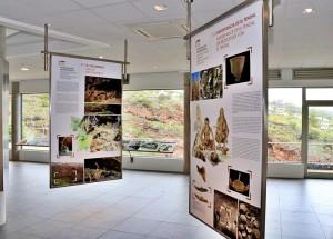 Theorie: An Schautafeln und mit Videos wird im Archäologiepark Tendal das Leben der Ureinwohner im Nordwesten von La Palma erläutert.