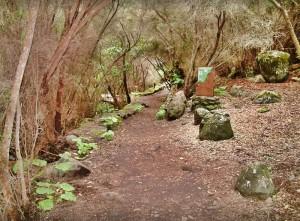 Vom Gebäude aus kann man einen Rundgang durch den Park von La Zarza unternehmen.