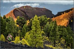 Transvulcania La Palma: Der Tanz über die Vulkane führt durch ständig wechselnde Landschaften. Foto: TRV-Rennleitung