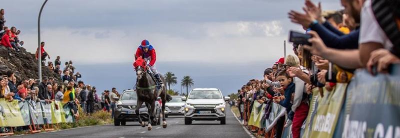 Halbfinale bei den Inselmeisterschaften La Palma Ecuestre: Am Samstag, 18. Mai 2019, finden die Pferderennen in Las Manchas statt. Die Rösser sprinten ab 18 Uhr in den Disziplinen Geschwindigkeit und Langstrecke über die Straßen. Das Ziel ist in der Nähe des Restaurants El Secadero.