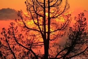 sunset-fernando-rodriguez