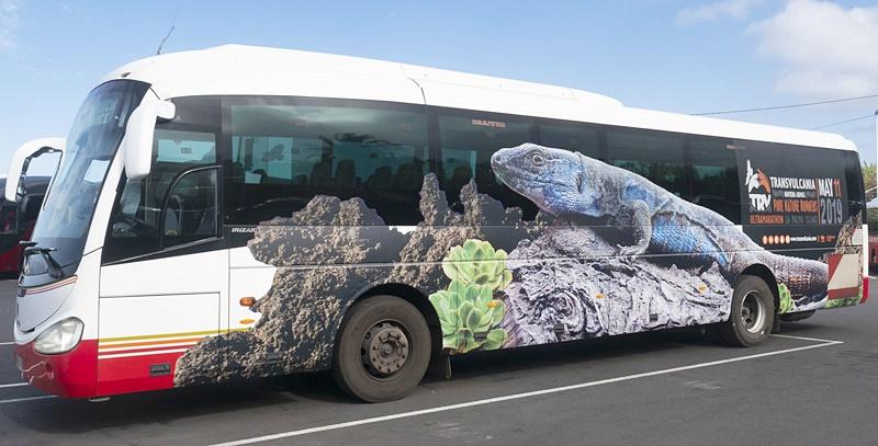 transvulcania-bus