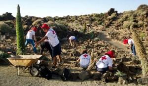 Ehrenamtlich: Freiwillige des Roten Kreuzes Spaniens kümmern sich um die Nationalparks der Provinz Teneriffa. Foto: Cruz Roja