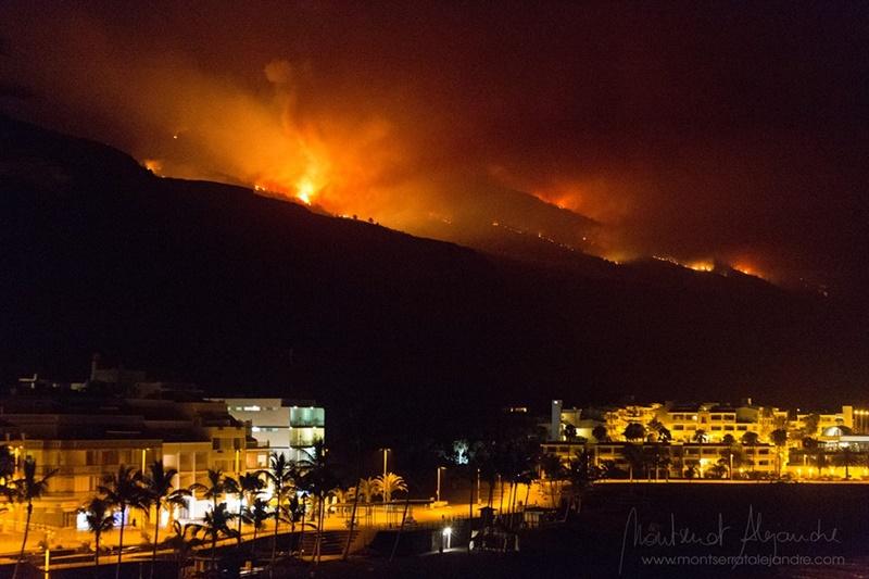 Der Waldbrand von 2016 auf La Palma ist allen noch gut in Erinnerung: Übungen wie die heutige sollen verhindern, dass Feuer dieser Größenordnung überhaupt entstehen können. Foto: Montserrat Alejandre