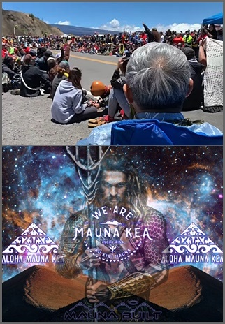 Proteste gegen den TMT-Bau an der Zufahrtsstraße zum Mauna Kea und das Plakat des Widerstandes von