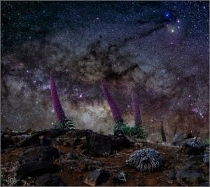 Nachthimmel-Fotos wie dieses von Giovanni Tessicini: am besten gelingen sie im Juni.