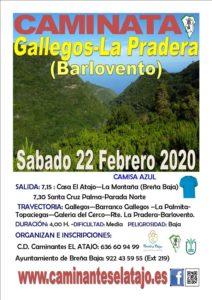 Wanderung Gallegos - La Pradera (Barlovento)