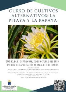 Kurs der alternativen Kulturen: Papaya und Pitaya