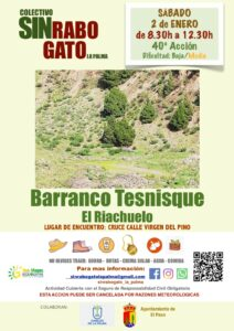 Freiwilligenaktion zur Entfernung des Rabogato in El Paso