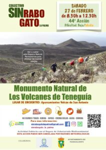Freiwilligenaktion zur Entfernung des Rabogato in Fuencaliente